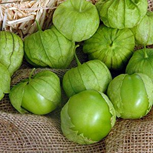 Tomatillo Super Verde