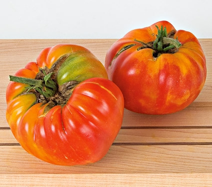 Tomato Striped German